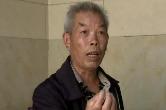 现场炒茶品茶,感受毛田传统手工制茶的魅力!