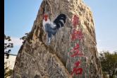 """""""湘佳""""""""壶瓶山""""喜获马德里国际注册商"""