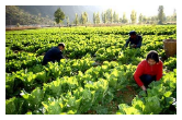 常德健康食品产业领军人才赴浙大深造