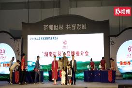"""视频丨湖南""""五色湘茶""""惊艳亮相中国国际茶叶博览会"""