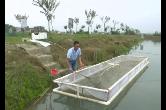 泉塘上湖村 | 能人带领特色养鱼 村民抱团发展共致富