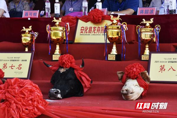 奖杯和头彩已备好,待胜利者争夺。