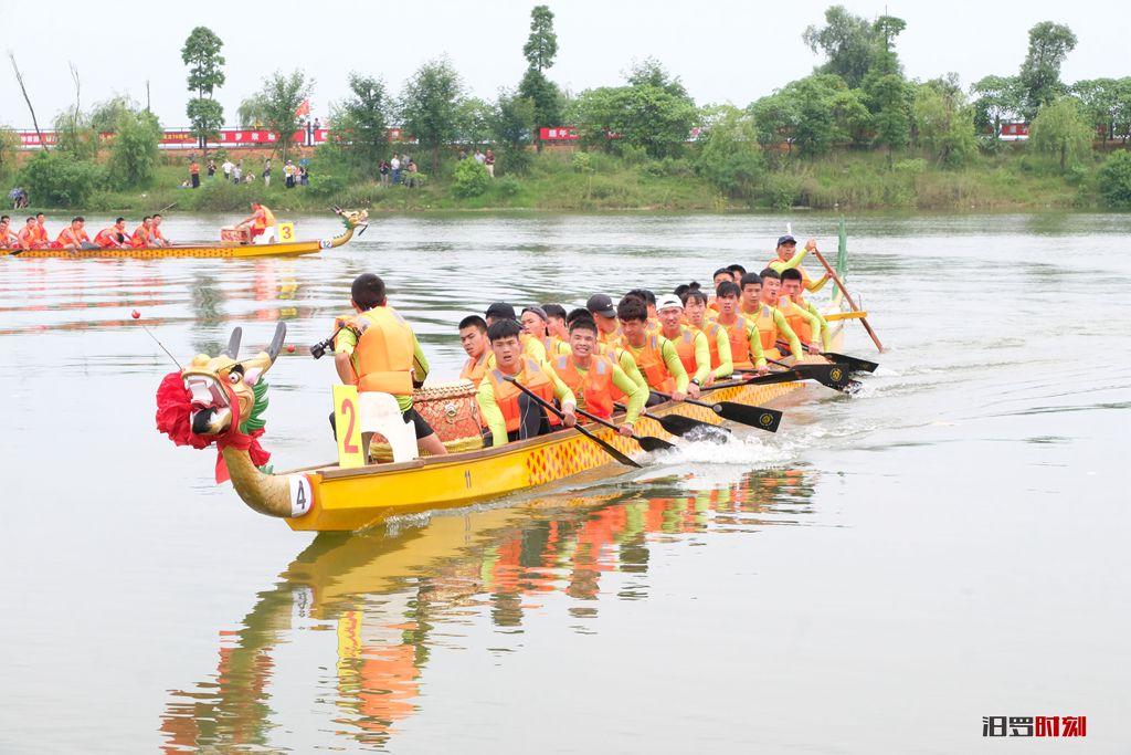 8支队伍挥桨500米直道竞速,屈子文化园新义队成功卫冕