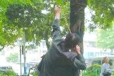 在湘乡小区用弹弓伤人的嫌疑人抓到了!原因竟然是……