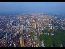 2011年岳陽樓區主要經濟指標完成情況
