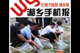 6月12日湘乡手机报