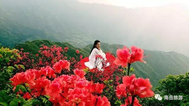 """南岳旅游新体验,看旅游+""""如何施展多元化魅力"""