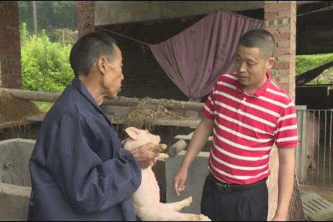 【乡村振兴】科技特派员罗正良:科技扶贫让群众脱贫致富助力乡村振兴