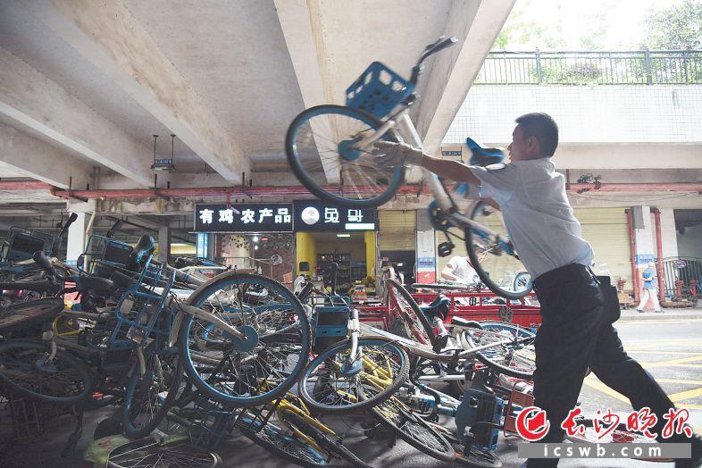 湘江世纪城小区物业工作人员正在清理共享单车。长沙晚报全媒体记者 刘琦 摄