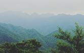 """""""黄金矿""""变""""绿金山"""" ——桃源县杨溪桥镇产业转型路径探访"""