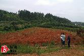 林业局:有序推进营造林检查工作