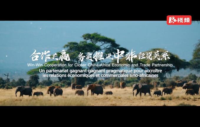 首届中非经贸博览会宣传片来啦