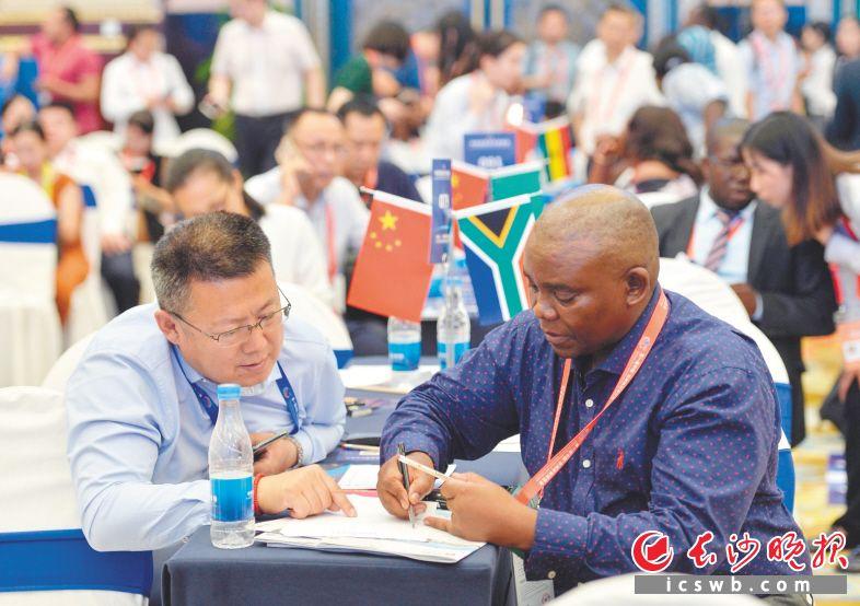 ←中非经贸合作磋商会上,一名非洲代表正在与一名中国企业代表进行磋商。 长沙晚报全媒体记者 邹麟 摄