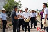 安乡县2019年6月份乡镇党委书记党建工作例会召开