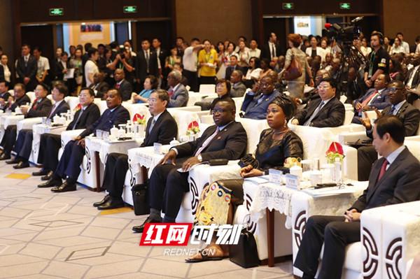 中新网丨湖南搭建中非经贸舞台 谱写开放新篇章