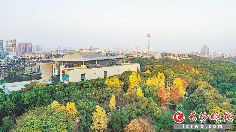 ↑湖南省博物馆新馆开放后,成为文化休闲的网红打卡地。 余劭劼 摄