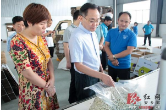张阳调研安乡县部分企业和在建工业项目