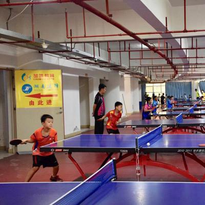湖南省青少年乒乓球锦标赛17日开打 368名运动员怀化竞技