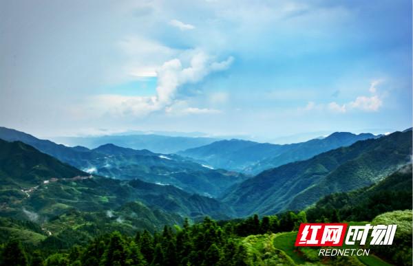 中国花瑶虎形山,自然旅游资源十分丰富,奇山异石,鬼斧神工;古木参天,绿荫成林。