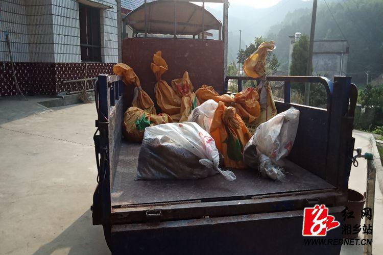 卖鸡2.jpg