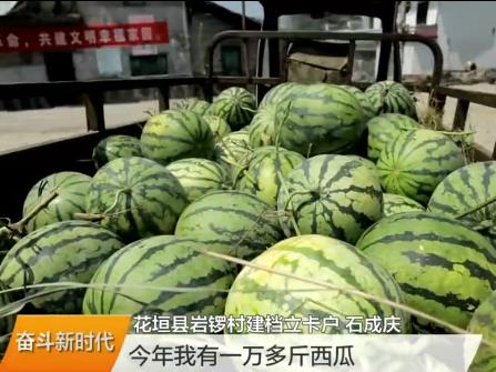(壮丽70年 奋斗新时代)湖南发展成就巡礼 湘西:脱贫致富快 全靠产业带