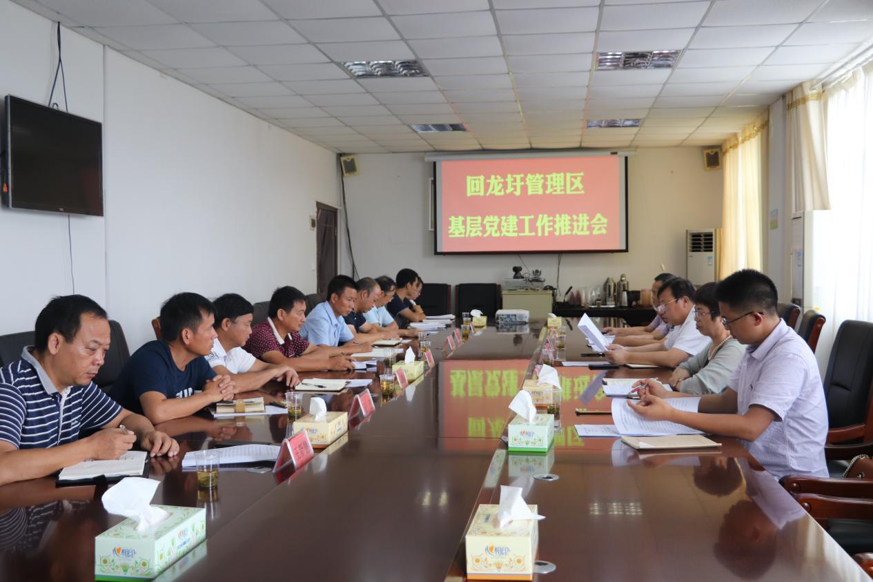 回龙圩管理区召开基层党建工作推进会