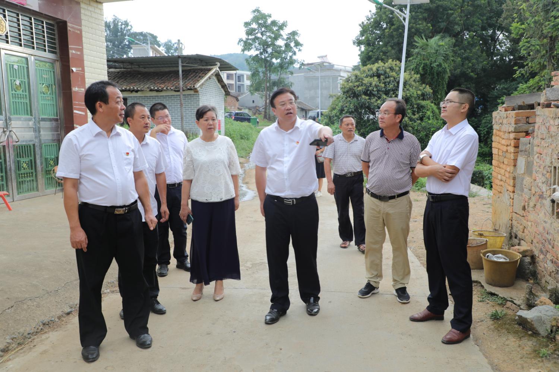 回龙圩:盘志元调研农村人居环境整治工作