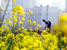 新中国峥嵘岁月丨废除封建土地制度