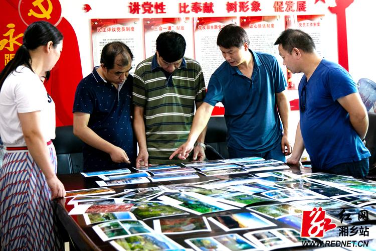 盛兴彩票手机版App创建森林城市主题摄影比赛评选结果出炉
