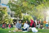 新西兰博士生中留学生近半