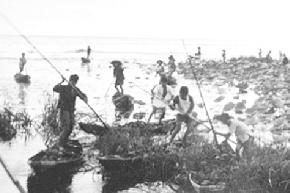 垦区歌魂丨农场初期景象