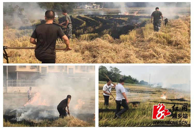 东郊乡:多措并举 加强秸秆禁烧工作