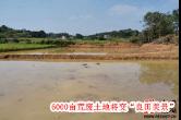 10月10日湘乡手机报