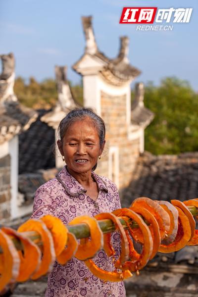 村民正在挂晒切圈的南瓜。(唐明登)