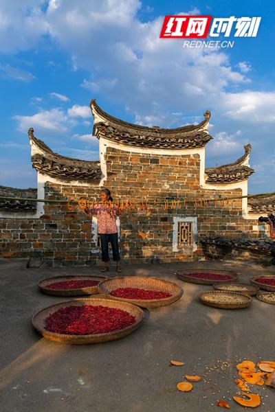 """文堂村被评为湖南省第五批历史文化名村,村里保存着建于明末清初的""""9纵18横""""古民居建筑,被誉为湘桂走廊古民居建筑中一颗明珠。(唐明登)"""