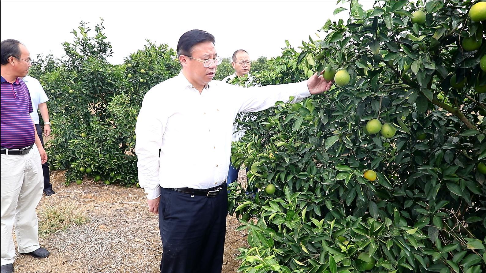 回龙圩:盘志元调研农村饮水安全和抗旱工作