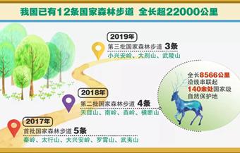 数据丨绿色发展70年之森林旅游