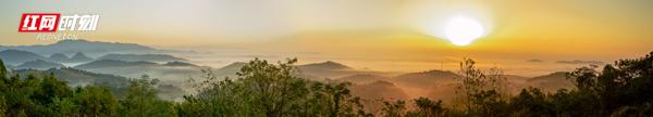 只见排江倒海的云雾连绵成白色海洋,云海包围着峰林,一座座山峰只露尖尖角,犹如孤岛,云雾映掩下的村庄若隐若现,构成了一幅秀丽壮观、生机勃勃的田园山水画卷,宛若仙境。(唐明登)