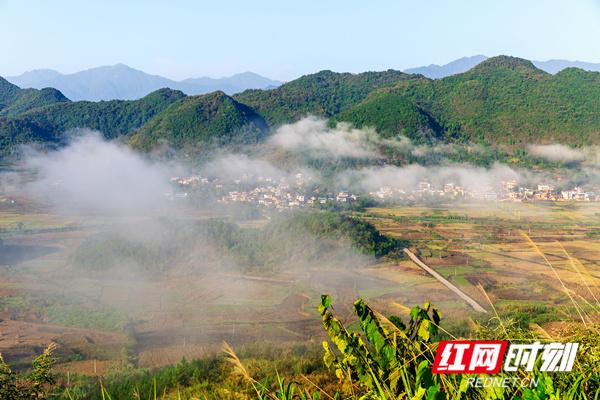 10月29日,湖南省永州市东安县水岭河谷雨后初霁,出现了云海雾山奇观。(唐明登)