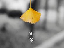 品读|冬日生暖阳  冉冉霁色明