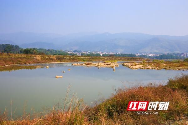 红网时刻永州11月8日讯(通讯员 彭华)秋深渐入冬,舜水依斑斓。