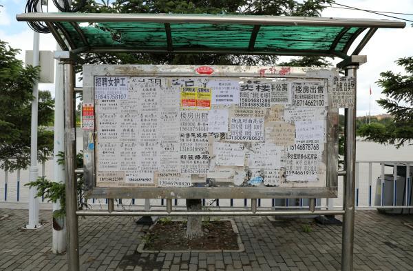 鶴崗,是流浪者的烏托邦,還是年輕人的避難所?
