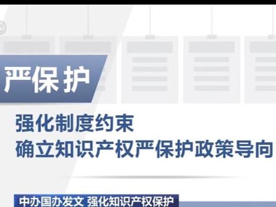 中办国办印发意见 中国将全面强化知识产权保护