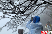【视频】张家界天门山雾凇今冬首秀 只看一眼就心动