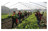 宁乡:新劳动教育 成就育人新模式