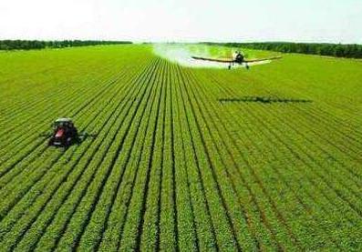 湖南日报晨风系列评论:坚持走精细农业发展路子