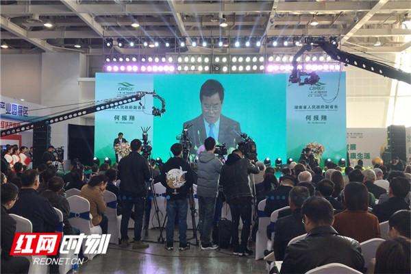 """湖南""""一带一路""""绿色博览会暨绿色产业发展论坛开幕"""
