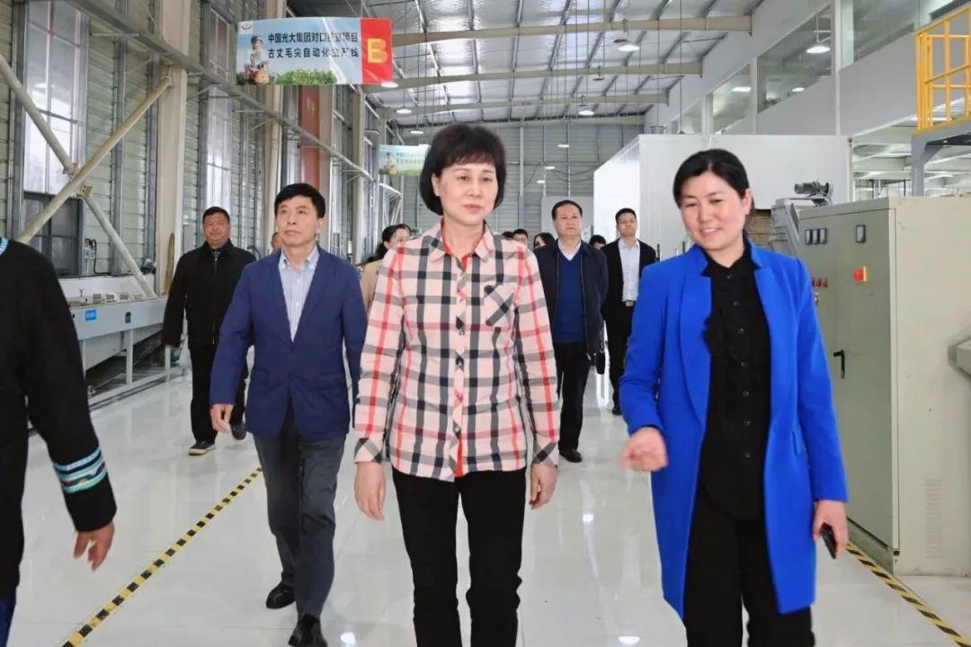 黄兰香在湘西州调研