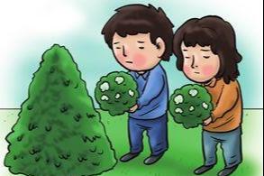 """云溪首例节地""""树葬""""引领生态文明新风尚"""