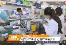 创新湖南·长沙 研发+产业链 打造产业领头羊